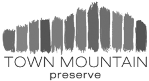 Town Mountain Preserve